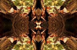 Four Way Split