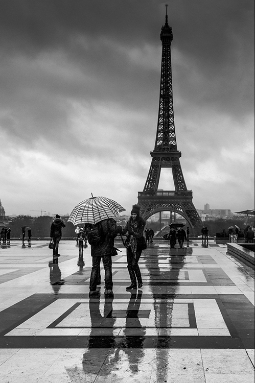 Paris in Springtime By Dennis Wood