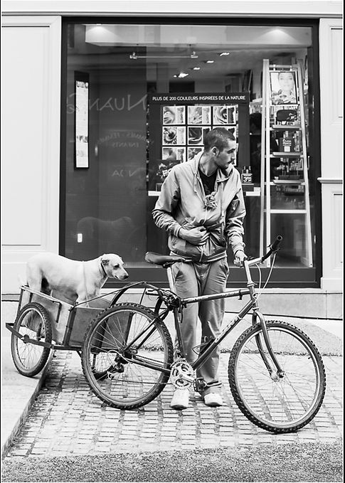Travelling Companions.jpg