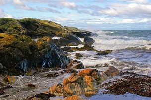 54 Rocky coast.jpg