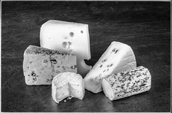Selection of Cheeses By Dennis Wood