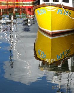 Reflections By Carol Basnett