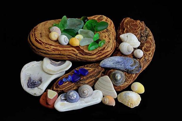 Sea Treasures.jpg