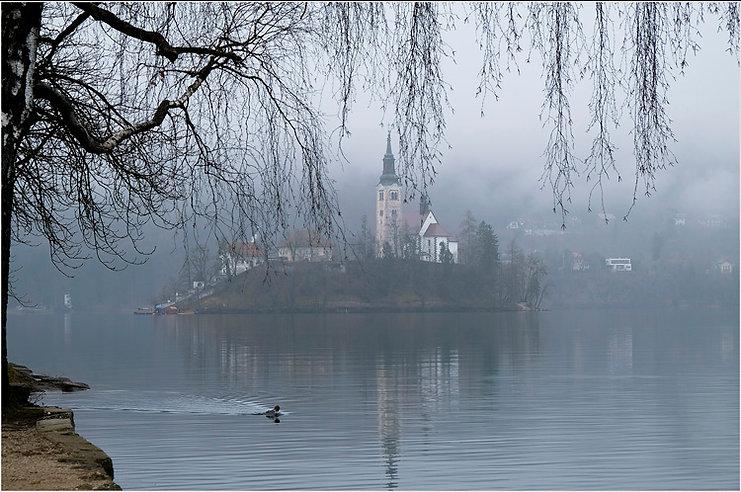 misty calmness_1.jpg