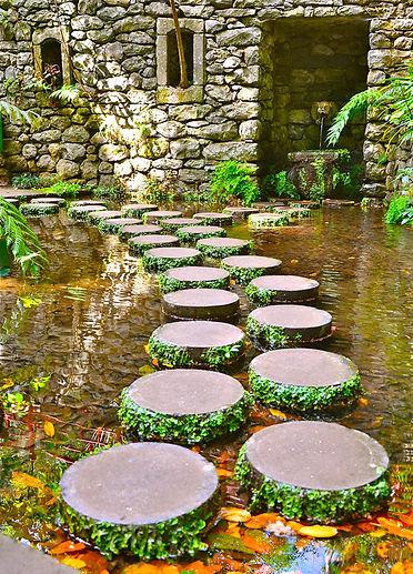 Stepping Stones.jpg