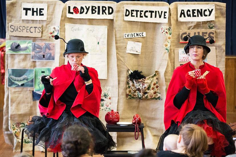 The Ladybird Detective Agency