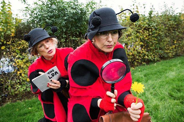 Gift: The Ladybird Detective Agency