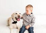 Pet Phtoography, Pet Portraits Christchu