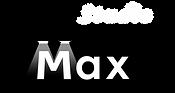Maxロゴ5.png