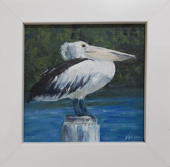 Australian Pelican Painting - Mini 2