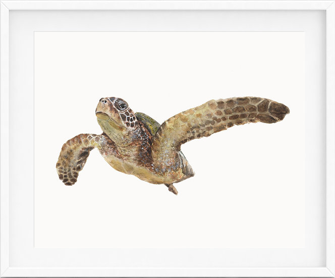 Sea Turtle - limited edition print 1/100