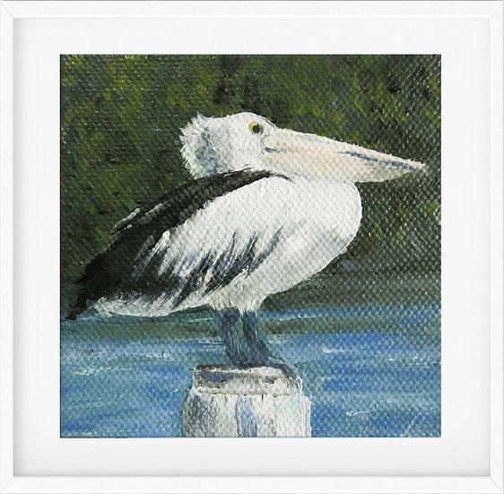 Mini Pelican - limited edition print 1/100