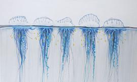 blue blottle painting central coast arti