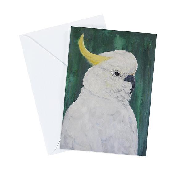 Sulfur-crested Cockatoo Greeting Card