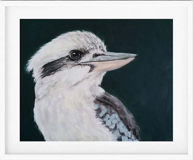 Kookaburra - limited edition print 2/100