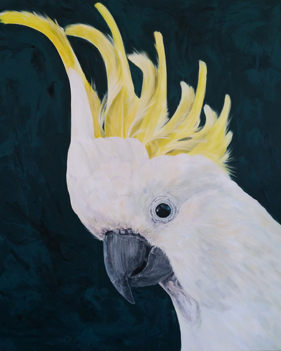 cockatoo_painting_central _coast_artist_