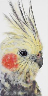 cockatiel painting sold