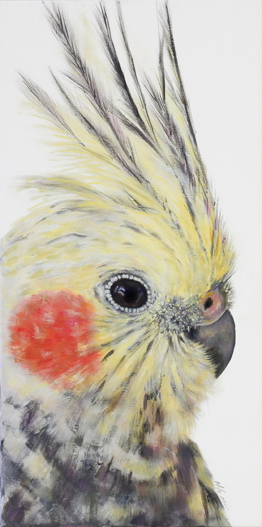 cockatiel painting sold