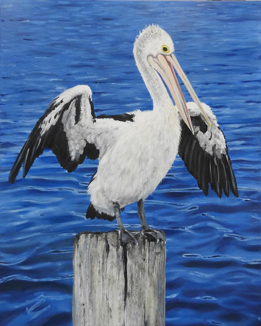 Pelican painting by Australian Artist Na