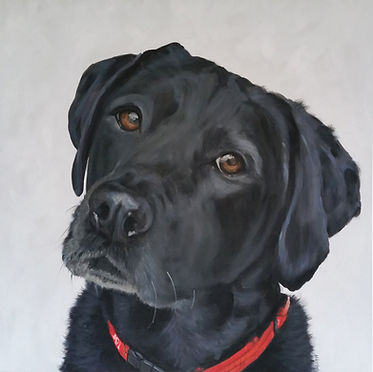 pet-portrait-painting-naomi-veitch.jpg