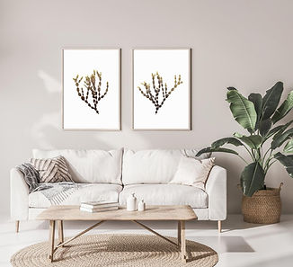 Art print set of seaweed, beach and coastal wall art
