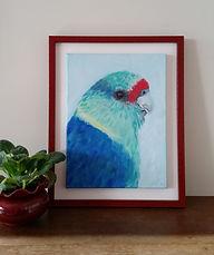 mallee-parrot-australian-bird-art-naomi-