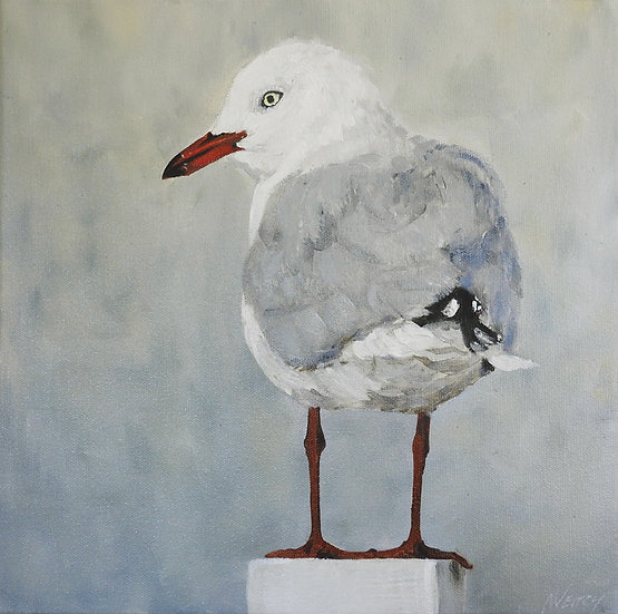 Seagull Painting - Framed