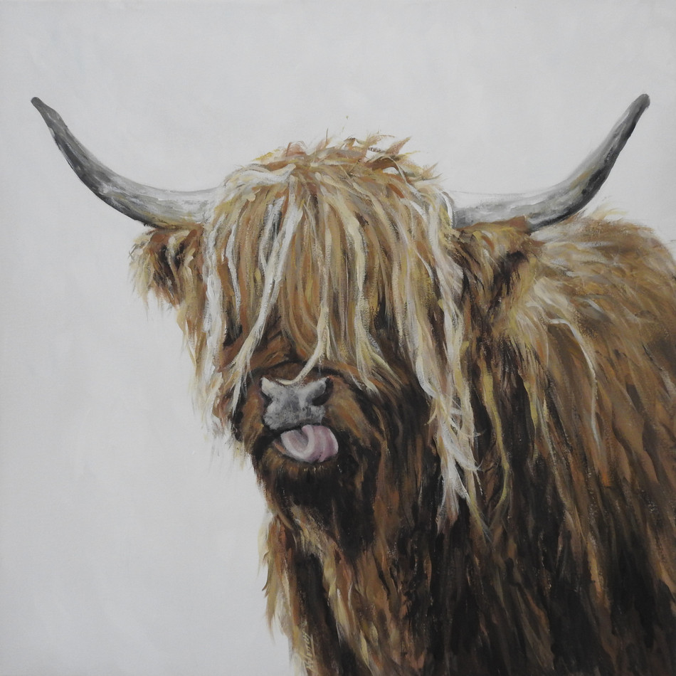 highland cow | animal art | Naomi Veitch
