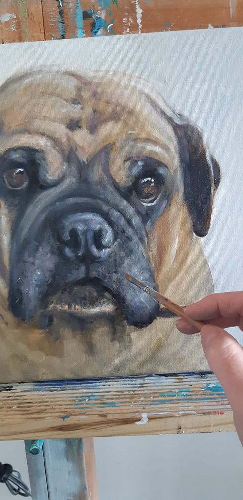 painted pet portrait by Naomi Veitch.jpg