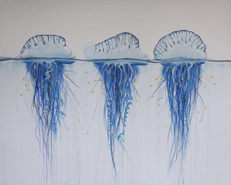 bluebottle jellyfish painting | beach house art