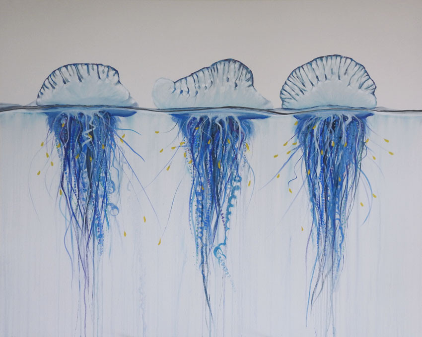 bluebottle jellyfish painting | beach house art