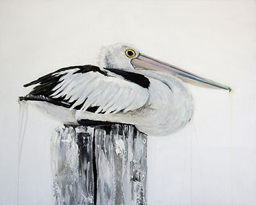 pelican painting by Central Coast artist