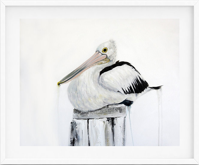 Australian Pelican - limited edition print 2/100