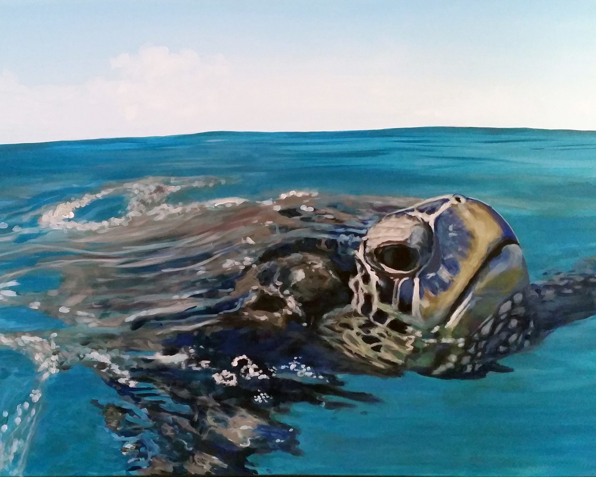 sea turtle painting | beach house art | Naomi Veitch