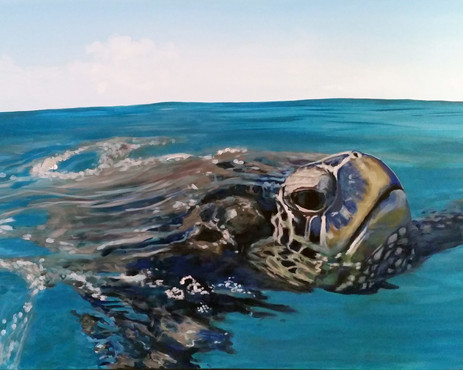 sea turtle painting | beach house art | Naomi Veitch