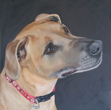 pet-painting-dog-cubby.jpg