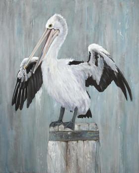 Australian pelican painting commisssion.