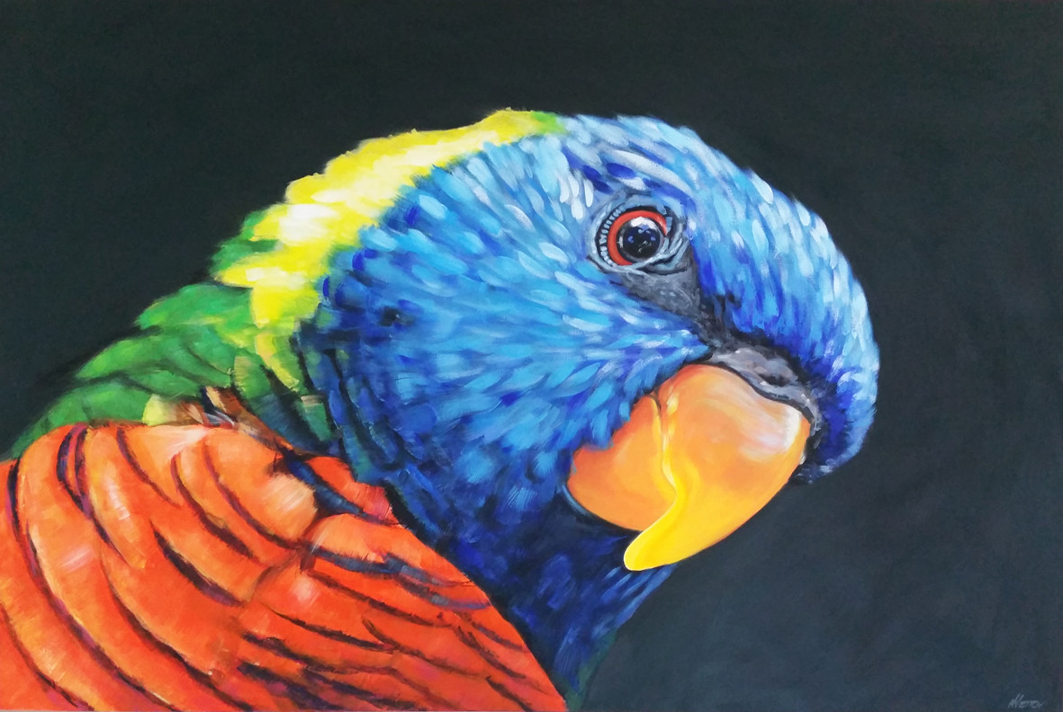 lorikeet painting sold
