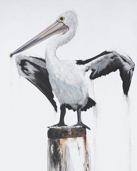 drip dry pelican painting by Australian