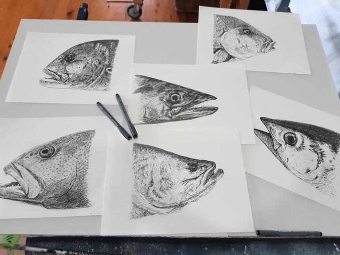 Fish drawings.jpg