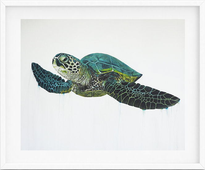 Sea Turtle - limited edition print 2/100
