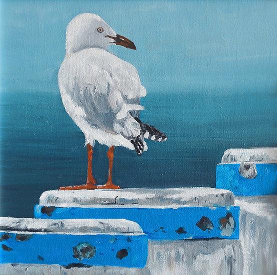 Seagull Painting - Framed