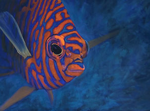 angel fish painting by Central Coast Art