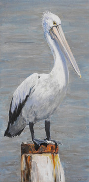 Commissioned pelican painting