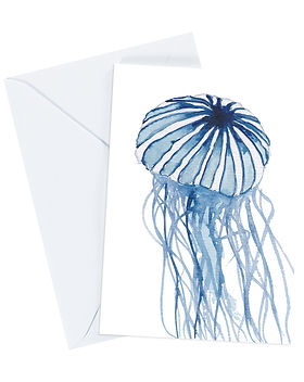 compass jellyfish greeting card and enve