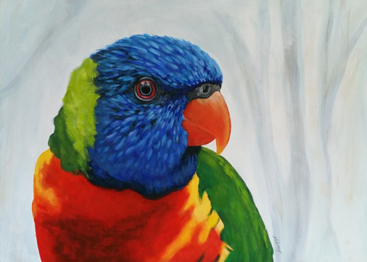 commissioned rainbow lorikeet painting