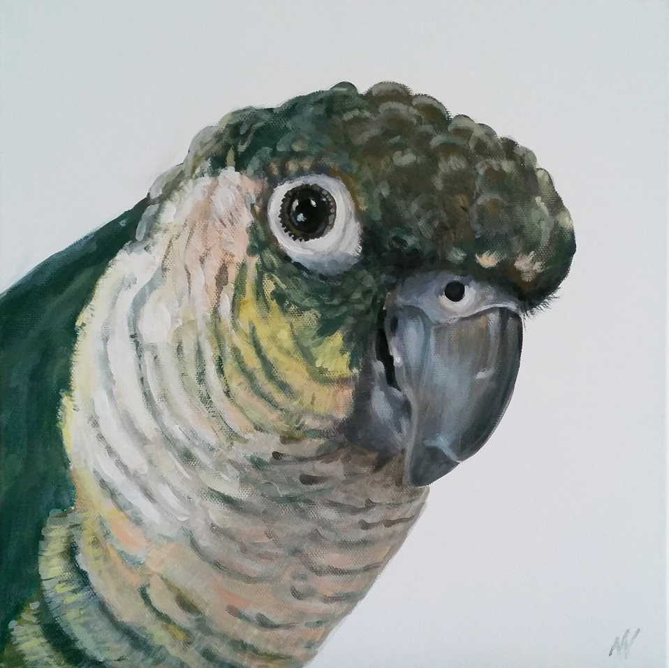 pet-painting-bird.jpg