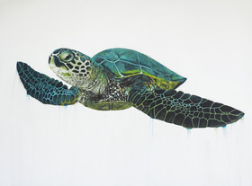 turtle painting central coast artist Nao
