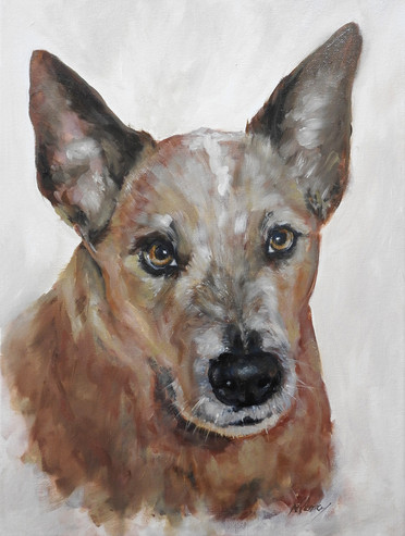 pet-painting-old-cattle-dog.jpg
