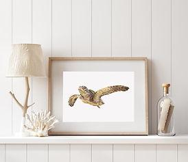 sea turtle framed print in a beach house. Coastal print sitting on a shelf in a beautiful beach house